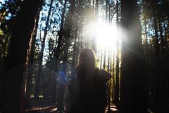 (nic lawrance) Tags: trees light shadow people sun nature girl woodland dark shine cotswolds gloucestershire corona figure
