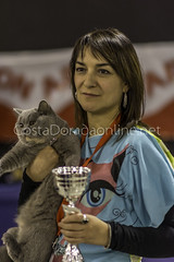 Reus 7 saln Bestial 2016 (info@costadoradaonline.net) Tags: desfiles agility felinos animales mascotas catalua compaia exotics exposiciones bestial concursos catalunyam recintofiral