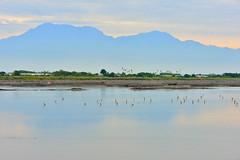 DSC_4779 (david linson) Tags: mountain beautiful taiwan overlooking dawu