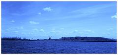 Delft Blue/ Delfts Blauw (Peter ( phonepics only) Eijkman) Tags: holland netherlands nederland noordholland spaarnwoude nederlandse