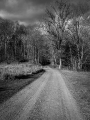 Dark sky and dirt road (CTfoto2013) Tags: road trees winter light sunset sky blackandwhite bw cloud plant storm tree blancoynegro monochrome field grass clouds forest woodland landscape lumix mood afternoon outdoor connecticut hiver champs newengland atmosphere stormy nb bn depthoffield panasonic route trail ciel arbres lumiere dirtroad nuages paysage foret sentier chemin orage audubon sousbois herbes southbury apresmidi orageux chemindeterre gx7 bentoftheriver micro43 lumieredhiver mirrorlesscamera