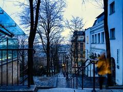 Paris Reviving . (kitchou1 Thanx 4 UR Visits Coms+Faves.) Tags: world trees winter sky people paris france nature architecture season landscape europe cityscape exterior arbres saison