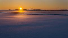 Soluppgng ver Lule / Sunrise over Lule (srchedlund) Tags: snow sunrise sonnenaufgang salidadelsol norrbotten leverdusoleil vinterbilder karlsvik bergnsbron schneewste luleriver srchedlund soluppgngsolnedgng