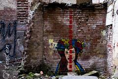 Lviv Ukrainian wall beauty (Ca Bart) Tags: lviv ukraine ukraina ucraina lemberg lwow