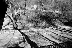 the light under the bridge 99/365 (#christopher#) Tags: road bridge trees sky blackandwhite church monochrome shadows w foliage ravine tokina1116mm