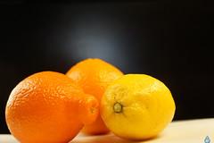 Three of a kind (in Explore) (Swaentje5) Tags: orange macro fruits yellow fruit lemon citroen geel oranje sinaasappel mineola citrusfruit citrusvruchten