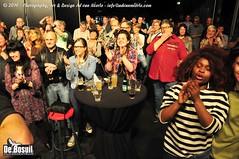 2016 Bosuil-Het publiek tijdendens Blues Caravan 2016 7