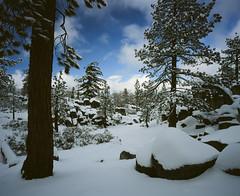 Big Bear (BTSPhotoreview) Tags: snow cold bigbear