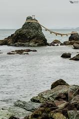 Meoto Iwa (Picardo2009) Tags: travel sea costa seascape beach japan landscape mar couple rocks marriage playa shore tied ise japon picoftheday futami meotoiwa atadas binded marriedrocks futamiokitamashrine meotoiwarocks piedrasesposo