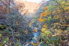 NarukoOnsen-50 (clouddra) Tags: autumn japan jp miyagiken narukogorge narukoonsen sakishi
