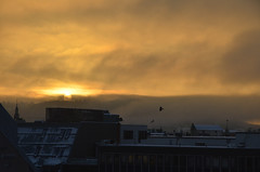 Sunrise from the office (-Kj.) Tags: morning winter snow bird oslo fog skyline clouds sunrise flying haze
