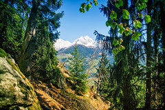 South Tyrol Bliss (Peter Gorges) Tags: italy mountain catchycolors scenic sunny foliage niksoftware