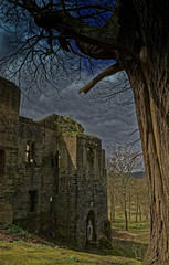 Harewood,Leeds (rockindave1) Tags: windows castle grass architecture yorkshire leeds medieval westyorkshire canoneos5dmark2 adobecs5 adobelightroom4
