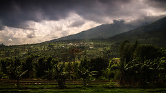 Dieng plateau, Indonesia (pas le matin) Tags: voyage travel sky mountain field clouds canon indonesia landscape asia outdoor hill ciel 7d asie mountainside nuages paysage grassland bananatree montagnes foothill diengplateau indonsie dieng bananiers canoneos7d canon7d