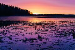 April Sunset (Teppo Kotirinta) Tags: blue sunset sea sun nature night suomi finland evening spring helsinki purple meri luonto auringonlasku kevt