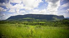 Regio da serra da canastra - MG (Lienio Medeiros) Tags: verde green brasil clouds minas gerais cu da serra cachoeira mato canastra casca nvens danta lieniomedeiros
