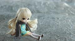 ice ice baby (e f i c h u °) Tags: ice golden eyes doll dal wig blonde pullip hybrid cornelia coolcat nelia obitsu eyechips leekeworld 21cm rewigged dotori rechipped evecream efichu