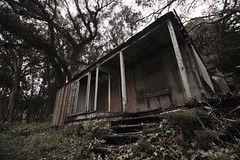 Lairds Landing (SkylerBrown) Tags: abandoned overgrown forest dark wooden woods decay haunted creepy derelict lairdslanding