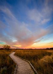 Sunset Pollardstown Fen April 2016 (kckelleher11) Tags: blue ireland sunset sky track minolta walk sony april boardwalk fen 1735mm kildare curragh 2016 a99 pollardstown