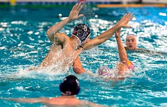 FINA Men's Water polo Olympic Games Qualifications Tournament 2016 - Trieste (ITA) (fina1908) Tags: blue italy white fina ita trieste waterpolo olympicgames qualification 2016 pallanuoto tournament2016 8kevingrahamcan