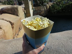 IMG_2615 (NIKKI BRITTAIN) Tags: disneysea anime animals japan tokyo disney streetfood foodie churro