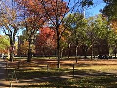 Good morning from Harvard University !!  Harvard Yard สถานที่ที่เก่าแก่สุดในมหาวิทยาลัยฮาร์วาร์ด เป็นพื้นที่ที่ร่มรื่นมาก มองไปทางไหนก็มีแต่ต้นไม้และสนามหญ้าเขียวๆเต็มไปหมด   พื้นที่บริเวณนี้ มีประตูเข้า-ออกทั้งหมด 27 ประตู สถานที่รอบข้างมี Memorial Churc