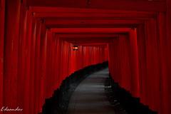 DSC_6268_LR (esandovalcruz) Tags: travel arquitecture old japan red