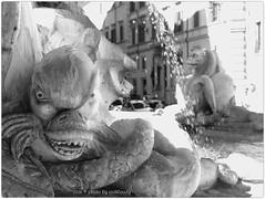 . (zioWoody) Tags: blackandwhite bw rome roma fountain rotonda bn leonardo piazza fontana biancoenero lazio piazzadellarotonda sormani leonardosormani
