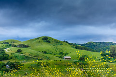 The barn (rkpunnamraju) Tags: california ranch park travel flowers trees sky dublin grass skyline clouds barn canon landscape spring outdoor farm seasonal hills mustard serene eastbay earthday regionalpark greenary explored ebprd dublinhila