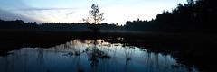 Before I got lost (kceuppens) Tags: sky nature landscape lost nikon belgium belgie outdoor natuur filter le lee antwerp lucht antwerpen buiten heide landschap kalmthout kalmthoutseheide verdwaald d810 leefilter nikond810