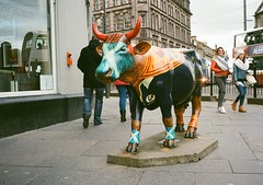 op - a very scottish cow (johnnytakespictures) Tags: street film monument statue pen advertising scotland cow lomo lomography model edinburgh flag traditional scottish olympus advert analogue halfframe stereotype tartan ee3 lomographycn400