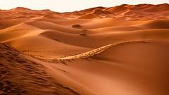 #PicOfTheDay Red Desert (Candidman) Tags: red mountains sahara sand colorado desert dunes heat