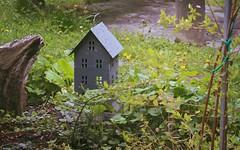 maisonnette (bulbocode909) Tags: nature vert printemps jardins dcorations maisonnettes