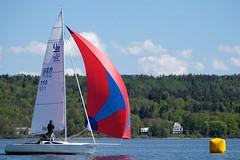 _DSF3368 (Frank Reger) Tags: regatta u20 dsc segeln segelboot diessen