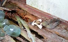 Abandoned village called Zalissya, Ukraine (sirgunho) Tags: city trip plant abandoned water town pond tour village power ghost union nuclear ukraine disaster soviet waste incident radar reactor called fallout cooling chernobyl sovjet ukranian oekraine chornobyl unie prypiat tsjernobyl kopachi tsjernobiel zalissya leliv