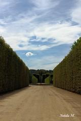 Maze - Palace of Versailles (Nabila M.) Tags: sky paris france garden ciel maze palaceofversailles labyrinthe chateaudeversailles 1200d