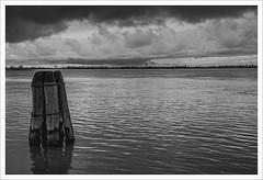 Senza titolo 83 (Outlaw Pete 65) Tags: sea sky blackandwhite white black water clouds landscapes italia nuvole mare cielo poles pali acqua paesaggi bianco nero biancoenero veneto puntasabbioni nikkor24120mm nikond600
