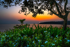Sunset... (mehtasunil) Tags: leica sunset post goa process leicacamera indiapictures bambolim leicalens leicaq leicaforum leicaworld leicaimages grandhyattgoa leicaindia indiashutterbugs