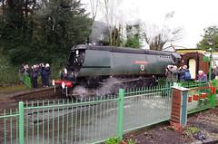 IMGP8394 (Steve Guess) Tags: uk england train engine loco hampshire steam gb locomotive alton westcountry ropley alresford hants wadebridge fourmarks 462 bulleid medstead 34007
