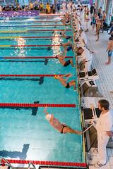DSC_2763_300116_0907 (Kristiansand svmmeallianse) Tags: green swimming swim skagerrak kristiansand ksa aquaram skagerrakswim2016