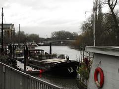 The Thames near Kew Bridge (Tony's Trains and Buses) Tags: kew thames boats riverthames