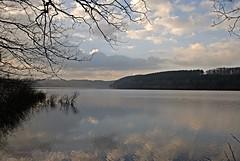 Hevesee im März 3 (DianaFE) Tags: see licht wasser wolken dämmerung landschaft spiegelung stimmung idylle frühjahr abendlicht sanft hevesee