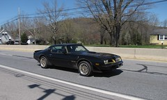 Blackjax Bar 4/10/2016 Pontiac Trans Am Bandit (Speeder1) Tags: show street cruise two black hot classic ford chevrolet car bar am rat pennsylvania muscle pa lane tavern rod pontiac trans bandit 55 goons burt aces willys reynolds gasket blacktop eights birdsboro blackjax