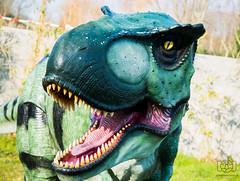 T-Rex - Alligator Bay (Jonathan Huelin) Tags: animal model nikon dinosaur teeth trex tyrannosaurus d610 beauvoir alligatorbay