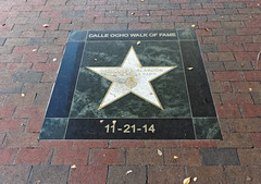 Gwiazda w Alei Gwiazd Little Havana | Walk of Fame in Little Havana