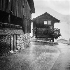 la pluie est l (Paucal) Tags: leica france rain jaune montagne alpes pluie grand chalet mm monochrom t aravis bornand alpages summicron35 chinaillon