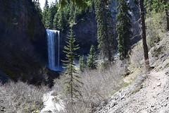 Tamanawas Falls from the distance (Catgirrrl) Tags: water oregon hike april mounthood 2016 tamanawasfalls