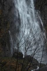 Pissevache (bulbocode909) Tags: nature eau suisse arbres cascades valais montagnes vernayaz pissevache forts