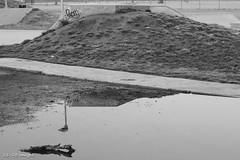 8 (wx_kev) Tags: urban blackandwhite playground essex walthamabbey townmead