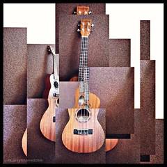 Uke World (larry_shone) Tags: abstract digital ukulele joiner tanglewood